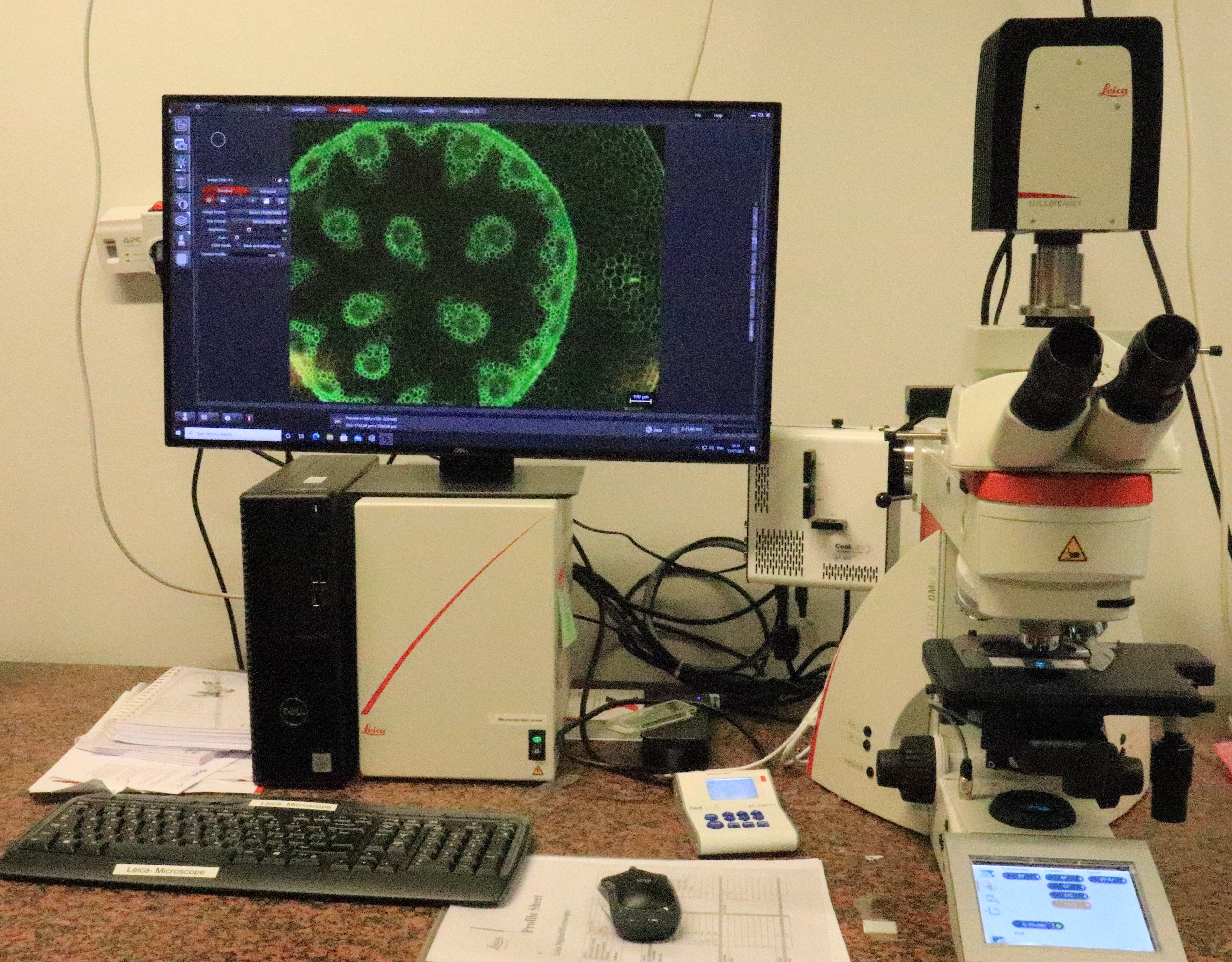 Picture of Leica DM6 Optical Microscope
